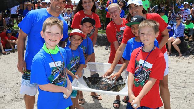Mauna Lani releases turtles