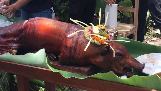 Bali roast pig
