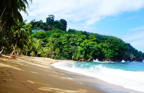 A beautiful beach on Tobago