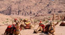 From Petra to the Dead Sea: 8 Days from $1,125