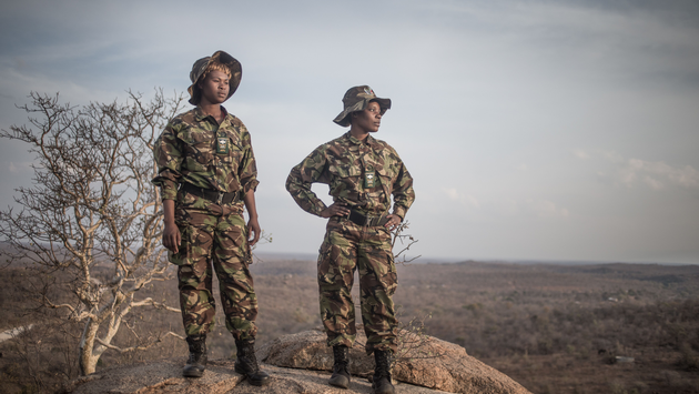 Africa, black mamba, anti-poaching unit