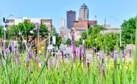 Urban flowers against the skyline of Des Moine, Iowa.