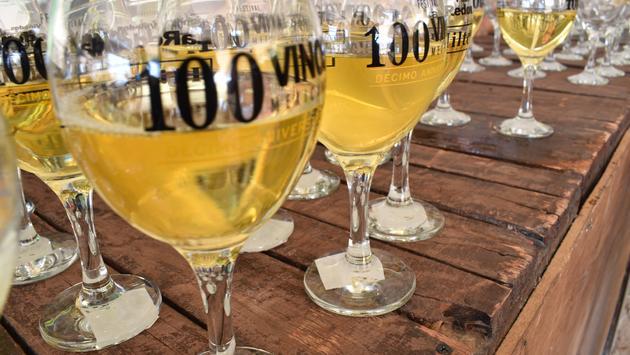 Festival 100 Vinos Mexicanos. (Foto del gobierno del estado de Querétaro)