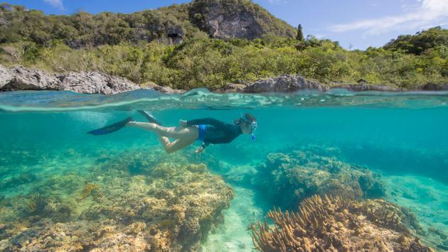 Snorkeling venture