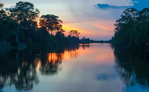 Amazon River at sunset