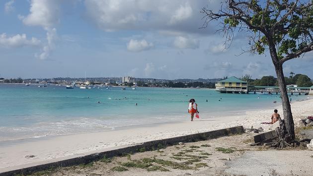 Pebbles Beach in Barbados