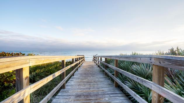 A boardwalk leading to Florida's Canaveral National Seashore