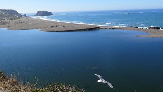 The Sonoma Coast Near Jenner, California