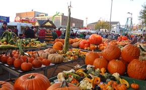 Circleville Ohio Pumpkin Show