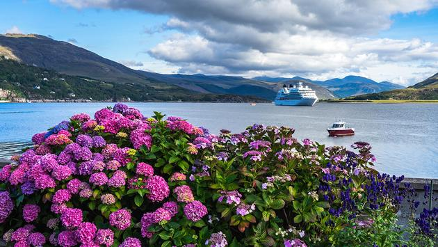 Purple flowers and cruise ship in background (font83 / iStock / Getty Images Plus)