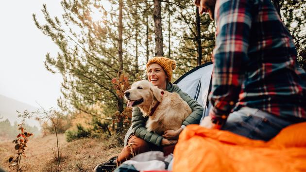 A couple camping with their dog