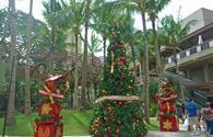 Oahu, Hawaii at Christmas