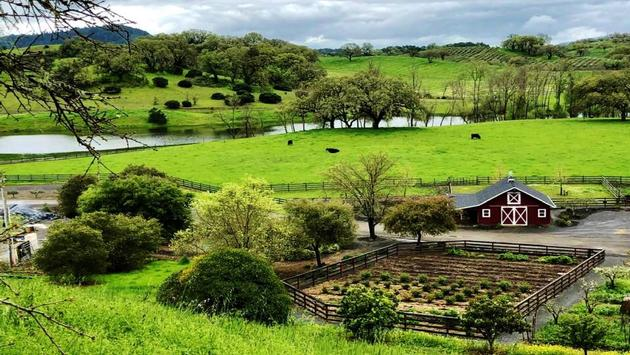 Grounds of Jordan Vineyard and Winery