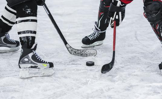 hockey, puck, travel