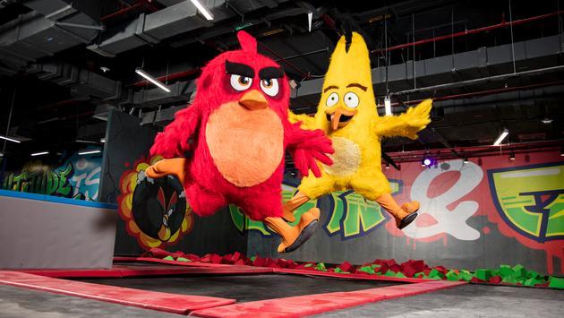 Angry Birds World Qatar
