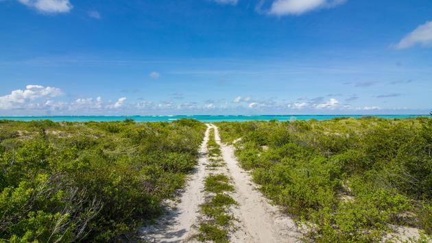 Trail to sea on Anegada