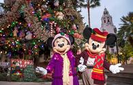 Disneyland, Christmas, theme park