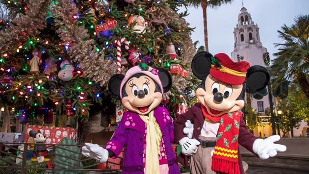 Disneyland, Christmas, theme park
