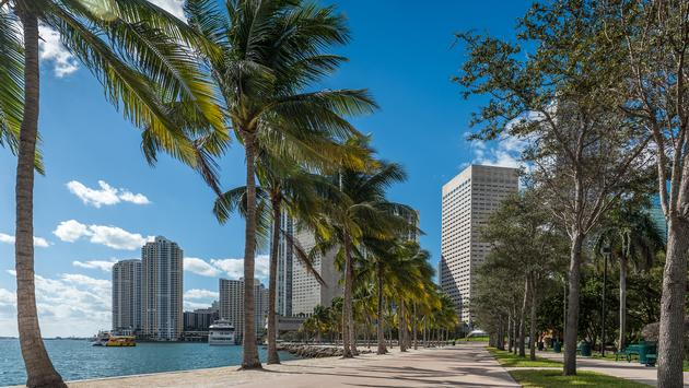 Peaceful promenade in Miami's Bayfront Park