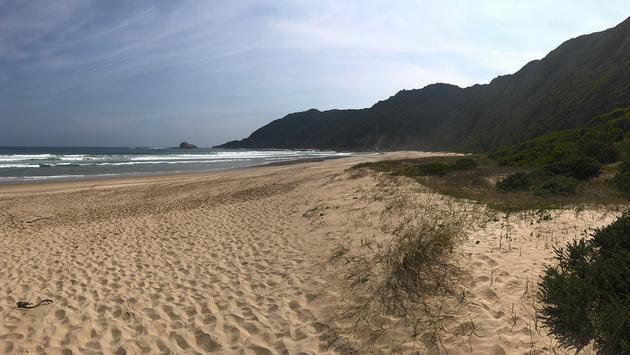The coastline at Swartvlei Beach