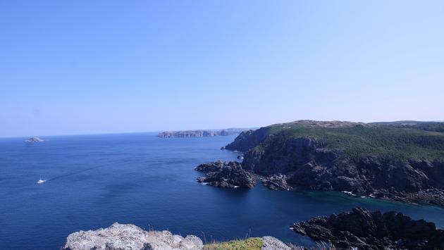 The Newfoundland coast near Twillingate