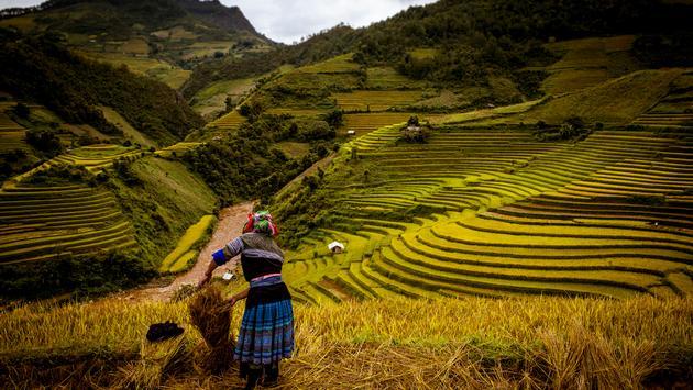 Vietnam, Exodus Travels