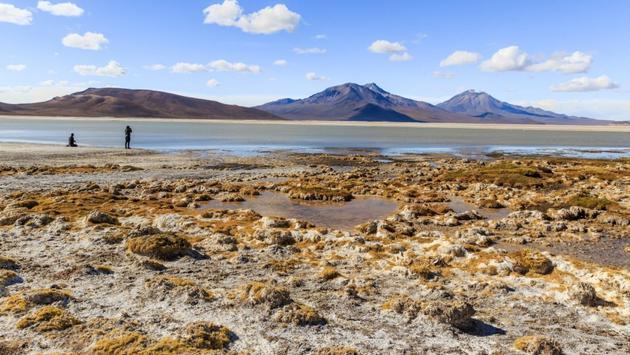 Surire Salt Flat, Chile