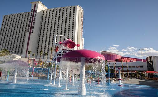 Special Offer at Circus Circus Las Vegas!