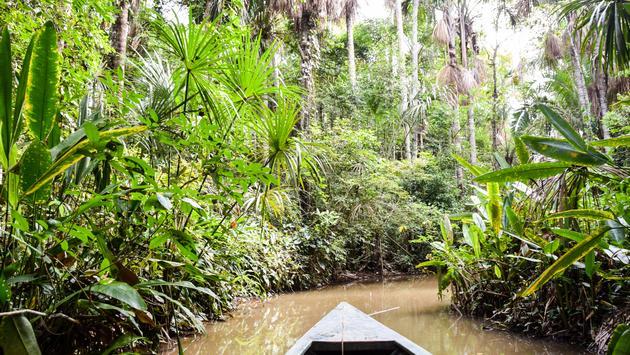 Lake Sandoval, the Amazon, Peru