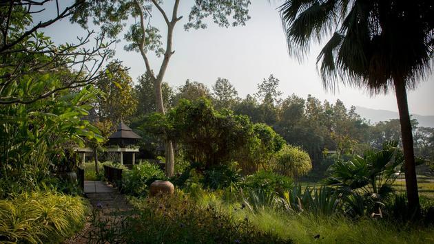 Tropical gardens at Four Seasons Resort Chiang Mai