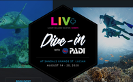 Dive with PADI® at Sandals Grande St. Lucia
