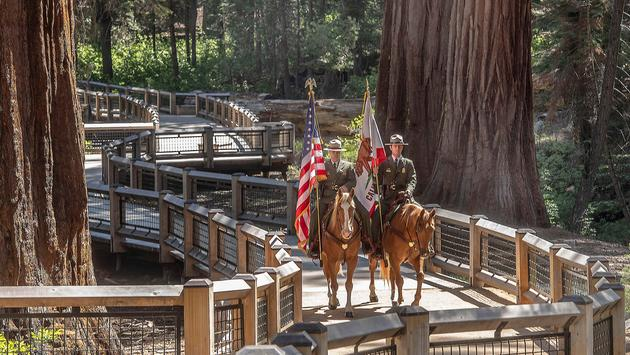 Yosemite National Park's mounted patrol presents the colors of the Mariposa Grove restoration.