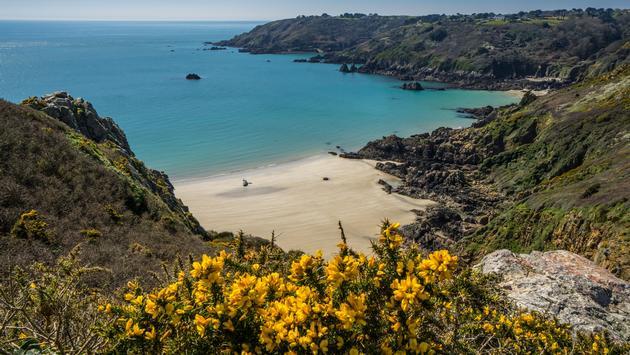 South Coat Cliffs, Guernsey