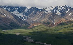 Polychrome Pass, Denali National Park
