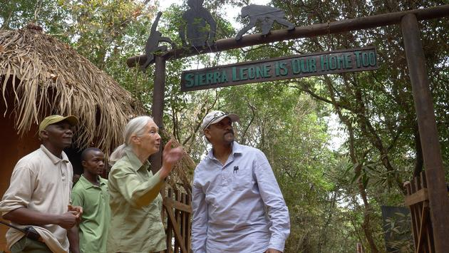 Jane Goodall at Tacugama Chimpanzee Sanctuary