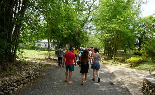 Travelers in Jamaica