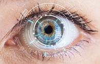 Concept rendering of an iris scan.