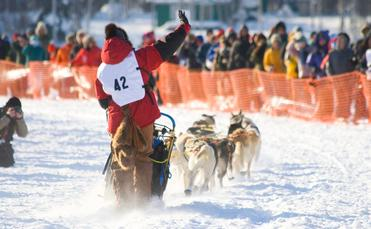 Alaska's Iditarod sled dog race
