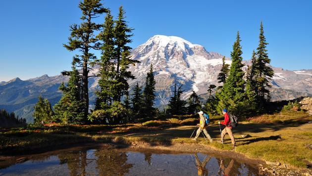 Hiking Mount Rainier National Park