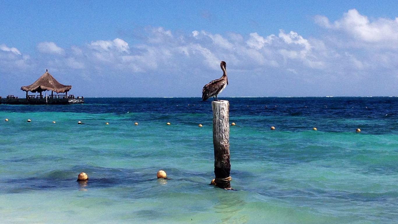 Cancun Proves a Great LGBTQ Destination