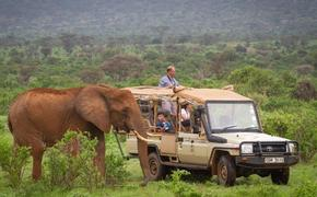 Personal Safari, African Travel Inc.