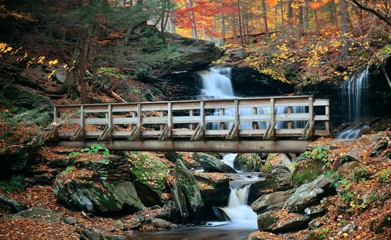 Ricketts Glen State Park, Pennsylvania during the fall
