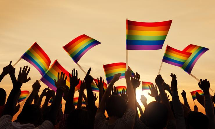 Group of People Waving Gay Pride Flags