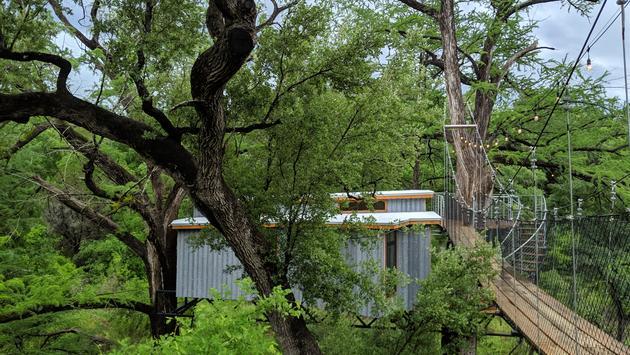nature, trees, treehouse