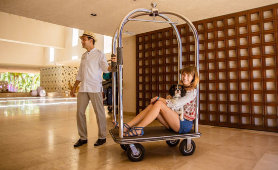 El segmento Pet Friendly continúa tomando fuerza en las tendencias de viaje a destinos de sol y playa. (Foto de Puerto Vallarta)