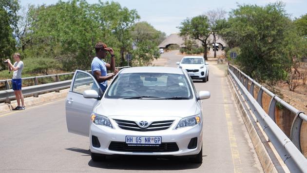 Stopped vehicles inside Kruger National Park