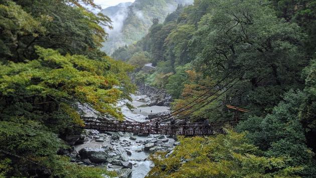 vine bridge, Iya-no-Kazura Bashi bridge, Japan, Shikoku