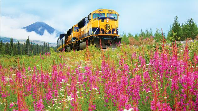 Alaska Railroad Denali