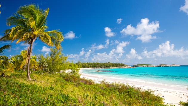 The island of Eleuthera located in The Bahamas (photo via erikruthoff / iStock / Getty Images Plus)