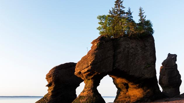 Hopewell Rocks in Canada at sunrise (prosiaczeq / iStock / Getty Images Plus)